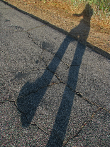 shadow walking