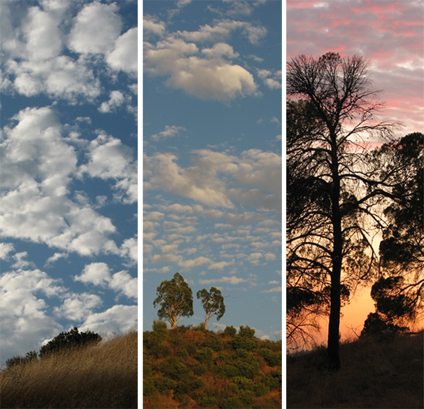 August sunset triptych
